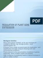 Regulation of Plant Gene Expression