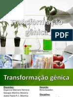 Melhoramento de plantas_Transformação genética.Joane