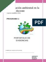 PORTAFOLIO P1 2014