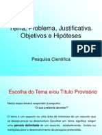 TEMA, PROBLEMA, JUSTIFICATIVA, OBJETIVOS e HIPÓTESES