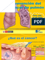 4.1. ROTAFOLIO - Prevencion Del Cancer de Pulmon