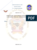 MORFOLOGÍA DEL  APARATO REPRODUCTOR DE PECES ÓSEOS Y CARTILAGINOSOS - OBTENCIÓN Y PRESERVACIÓN DE HIPÓFISIS