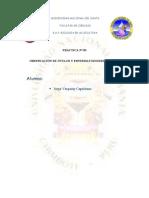 OBSERVACIÓN DE ÓVULOS Y ESPERMATOZOIDES DE PECES