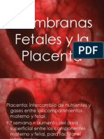 Membranas fetales y placenta
