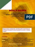 3 Boala Marek