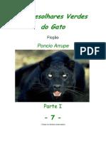 Cap. 7 - OS DESOLHARES VERDES DO GATO, por Pôncio Arrupe
