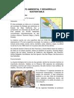IMPACTO AMBIENTAL Y DESARROLLO SUSTENTABLE