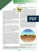 3. Fuentes de Magnesio