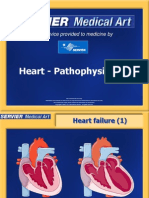 Heart Pathophysiology