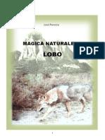 Jose Po Veda Magic a Natural Ez a Lobo