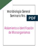 Seminario Nc2b04 Pruebas Bioquimicas