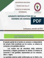 exposicionembriologia-121129235606-phpapp01