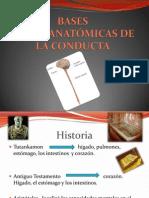 presentación de psicofisiología