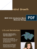 Bacterial Growth 2013