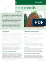 Phytophthora Lateralis - Forestry Commission