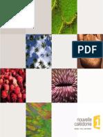 DP rentrée 2014 NC 1ère v2.pdf