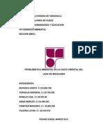 PROBLEMÁTICA AMBIENTAL EN LA COSTA ORIENTAL DEL LAGO DE MARACAIBO.