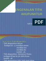 TITIK-AKUPUNKTUR
