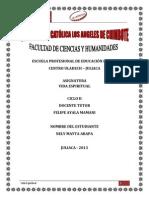 INFORME DE PLAN PASTORAL Nº II