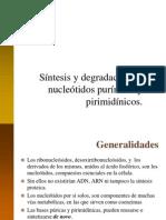 0 8 zComplementaria - Sintesis y Degradacion de Nucleotidos (1)