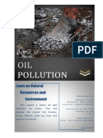 Oil Spill Pollution