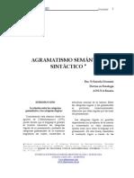 AGRAMATISMO SEMANTICO - SINTACTICO