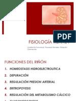 Fisiologia Renal I
