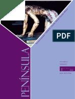 2009_revista completa