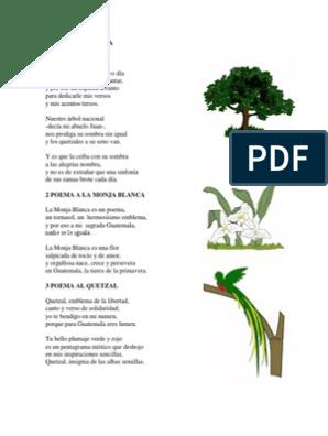 1 Poema A La Ceiba Naturaleza