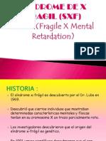 Sindrome De X Fragil Pdf