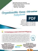 Organizacion Como Carceles Psiquicas