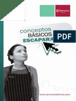 Conceptos Básicos de Escaparatismo.pdf