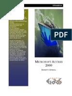 Access2000 Eidos