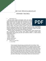 Diagnosis Dan Penatalaksanaan Ruptur Esofagus