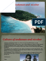 Andaman and Nicobar Ppt