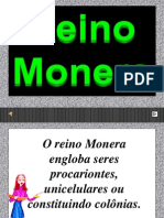 A p Point Reino Monera2007 Grav 091020091037 Phpapp01