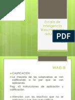 WAIS III Diapositivas