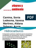Hidrocarburos Final