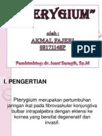 Pteregium.pk
