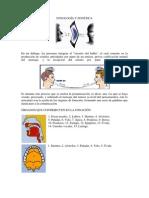 Fonologia y Fonetica