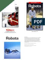 raz lt38 robots clr