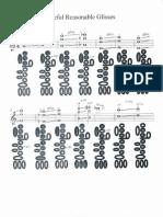 Extended Flute Techniques