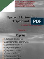 Operonul (2)