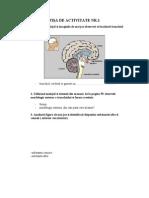 0 Fise de Activitate Pe Grupe Si Individuala Anatomia Encefalului