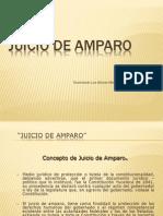 Materia Amparo 2013