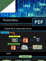 Toxocinética