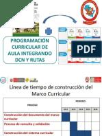 Orientaciones de La Programacion Curricular_primaria