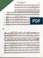Nino Rota - Valzer Dal Gattopardo - Partitura