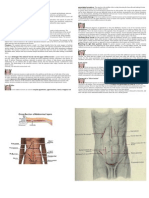 Type of Incisions