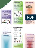 leafletdbd-130301023710-phpapp02